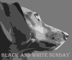 Black & White Sunday Badge Large