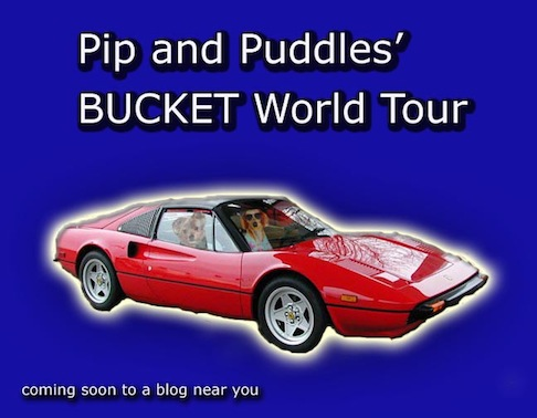 P&P Bucket World Tour Badge