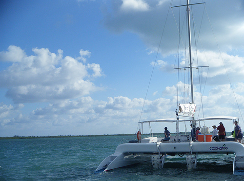 TCM Cruise 2013 Catamaran