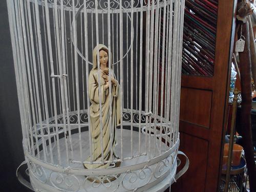 Madonna In Birdcage