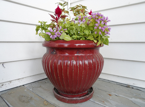 Porch Pot