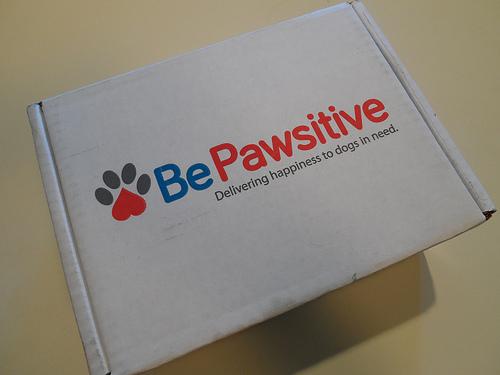 Be Pawsitive Box