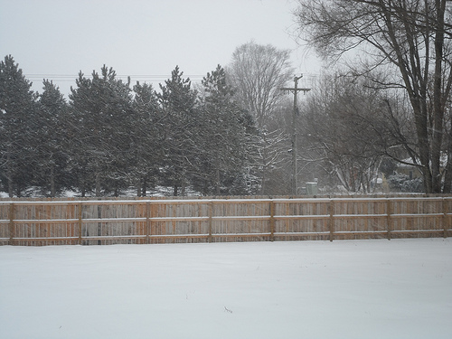 December 14 Snow
